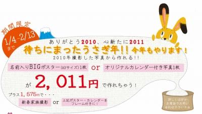 s_2011年賀状キャンペーン.jpg
