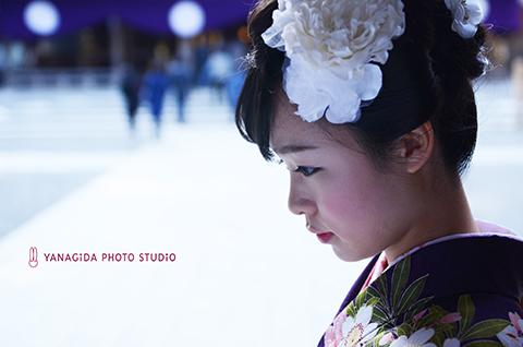 弥彦神社 成人式 撮影.jpg