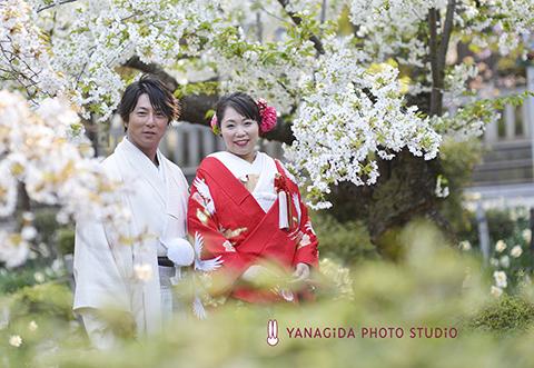 桜 結婚式 撮影.jpg