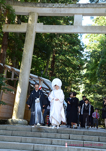 神社 鳥居 結婚式.jpg