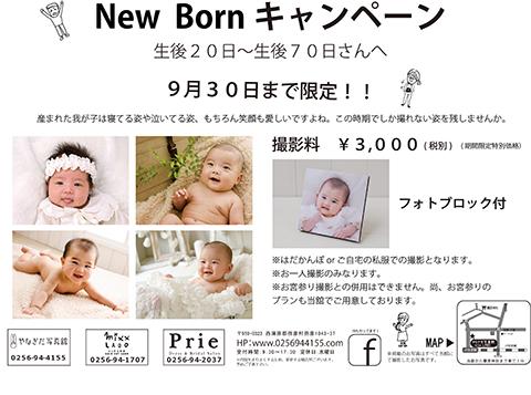 2_NewBorn裏.jpg
